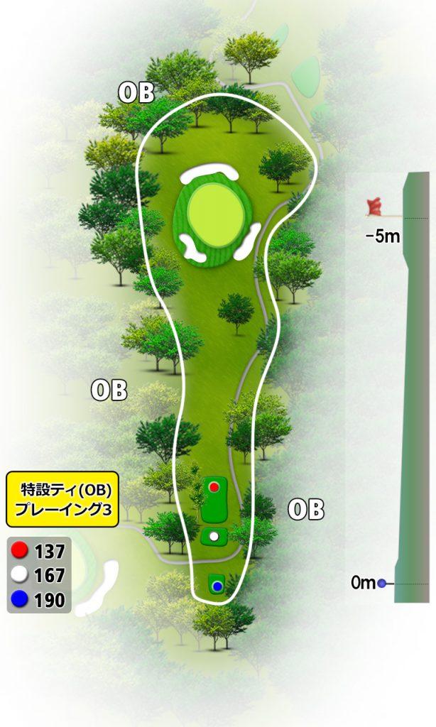 No.12 Hole